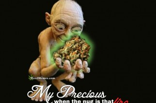 My Precious Gollum Weed Memes When The Nug Is Fire!
