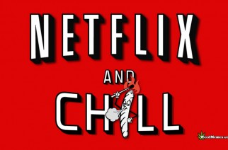 Top Ten Netflix & Chill Weed Memes 2016 for Stoners