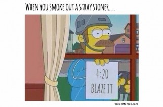 Simpsons Ned Flanders Stray Stoner Funny 420 Weed Memes