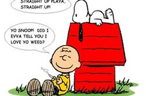 Charlie Brown Loves Snoopy's Weed Cartoon 420 Memes