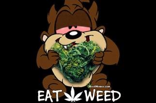 Eat Weed Tasmanian Devil Nug Heart Weed Memes