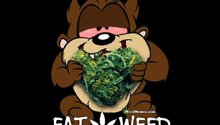 Pothead Cartoons Weed Memes