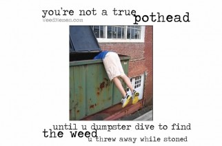 You're Not A True Pothead Until You Dumpster Dive Weed Memes