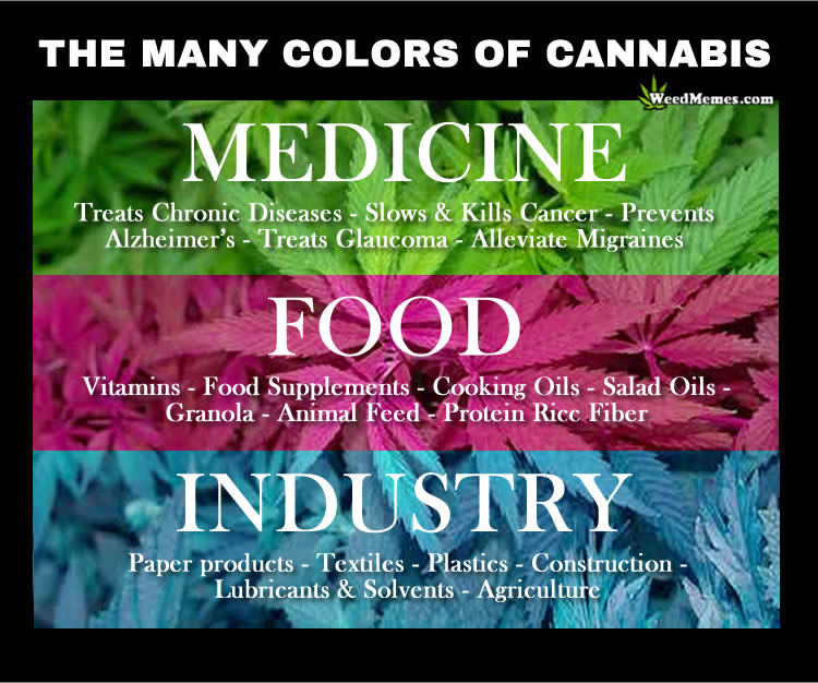 Many Uses for Cannabis Medicine Food Industry Weed Memes