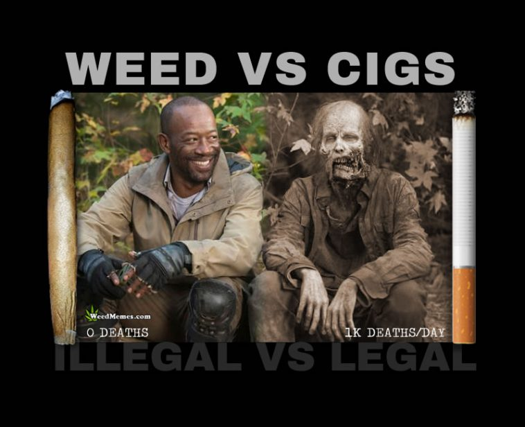 weed cigarette walking dead weedmemes 758x616 weed vs cigarettes walking dead spoof weed memes 420