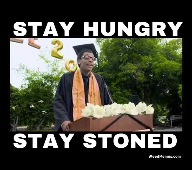 Wiz Khalifa Commencement Stay Hungry Stay Stoned Weed Memes