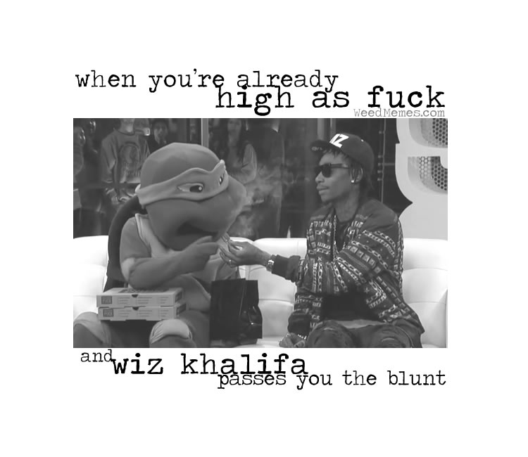 wiz khalifa passes blunt weedmemes wiz khalifa weed memes passes blunt when high af memes
