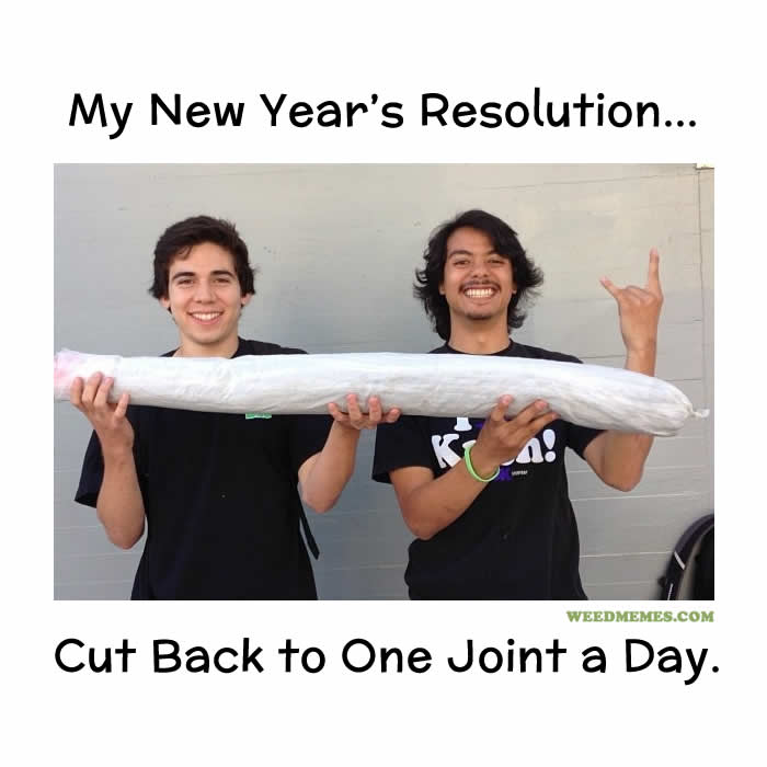 New Year's Resolutions for Stoners Funny Weed Memes