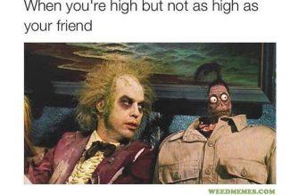Beetlejuice High Funny Weed Memes
