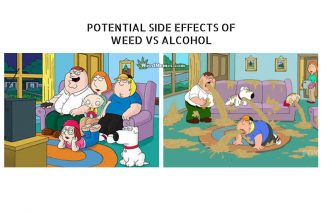 Weed vs Alcohol Side Effects Family Guy Cartoon Weed Memes