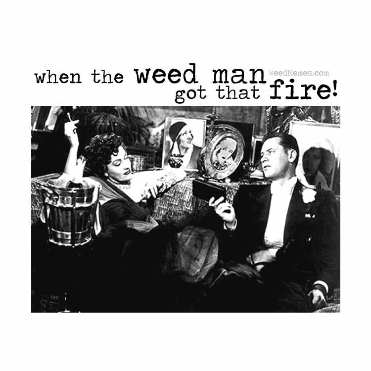 Weedman Got Fire Weed Memes