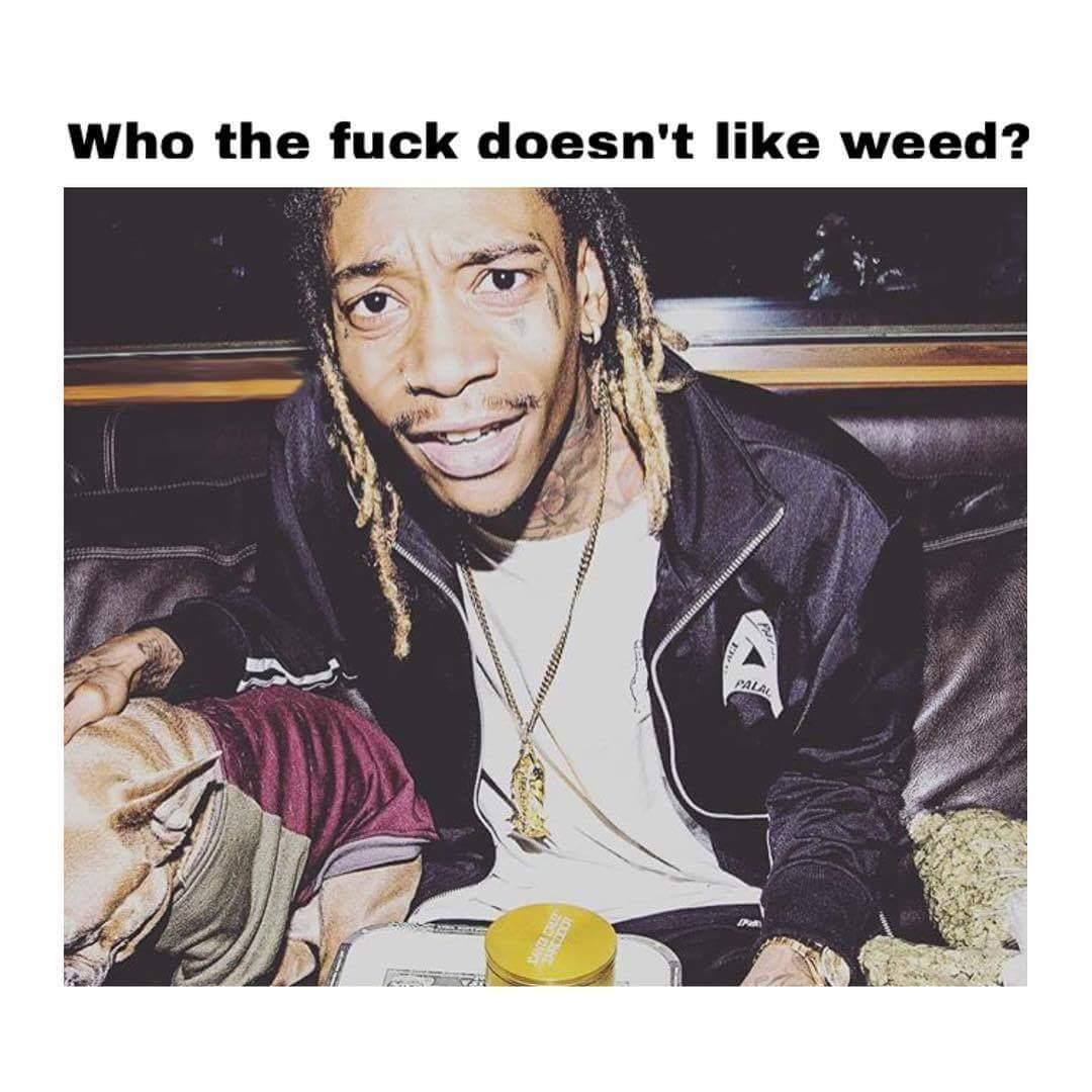 Wiz Khalifa Weed Pics & 420 Quotes Marijuana Memes