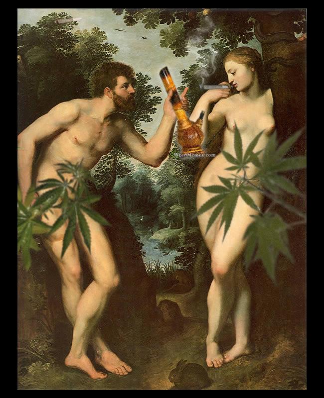 Adam Eve Stoner Weed Memes