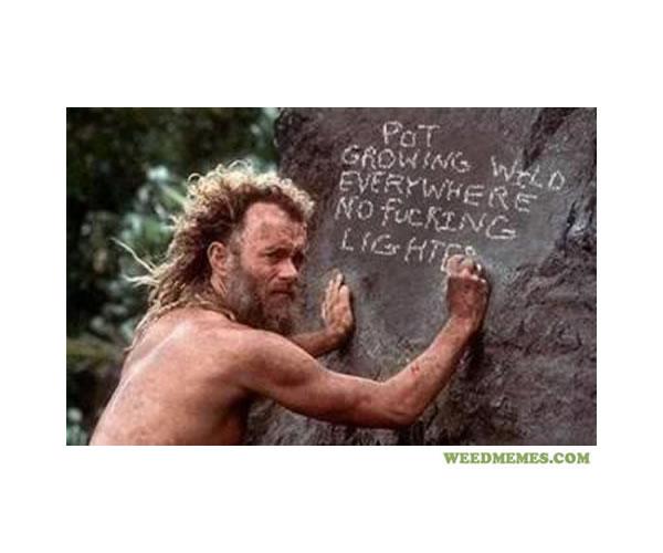 Tom Hanks No Lighter Weedmemes
