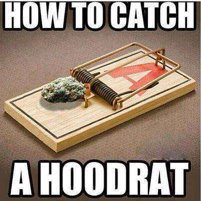 How To Catch A Hoodrat Funny Weed Memes