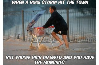 High on Weed During Storm Got The Munchies Weed Memes