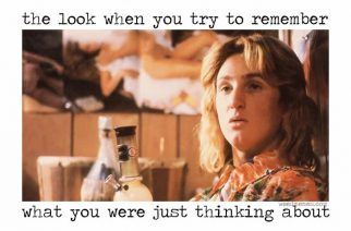 Jeff Spicoli Fast Times at Ridgemont High Sean Penn Funny Weed Memes