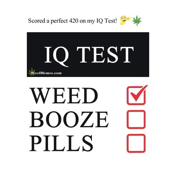 Stoner IQ Test Weed Memes