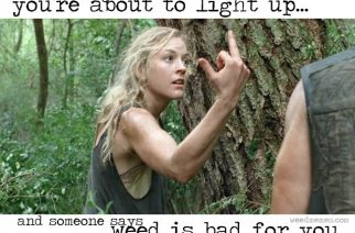 When Someone Says Weed Is Bad For You Walking Dead Weed Memes