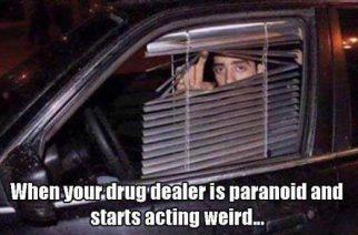 Weedman Paranoid Funny Weed memes
