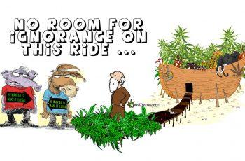 Stoner Noah's Ark Weed Memes