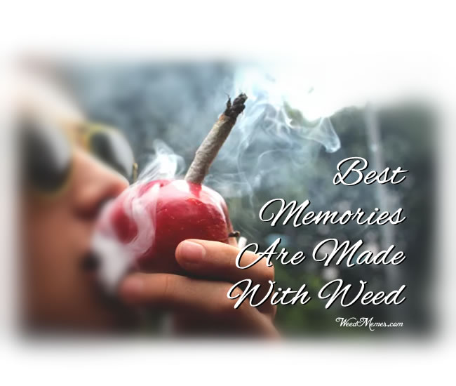 Best Memories Made Weed Quotes