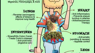 Cannabis. Does a body good Marijuana meme - Weed Memes