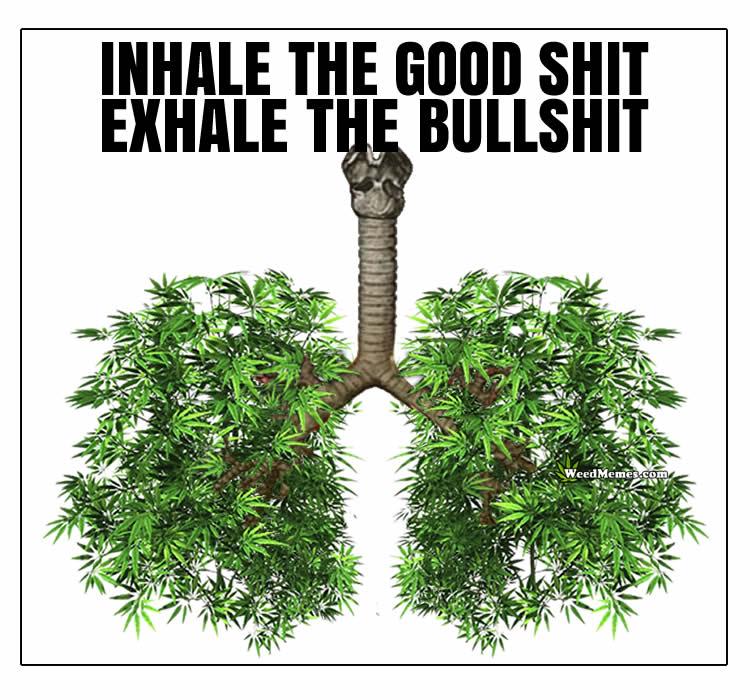 Inhale Good Shit Exhale Bullshit Weed Lungs Smoke Weed Memes